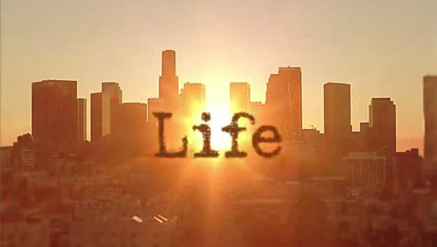 compunere-viata