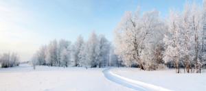 poezie iarna